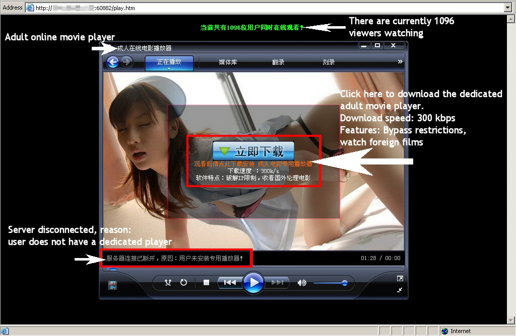 Chinese Phishers Get On the Fake Codec Bandwagon - Webroot Blog