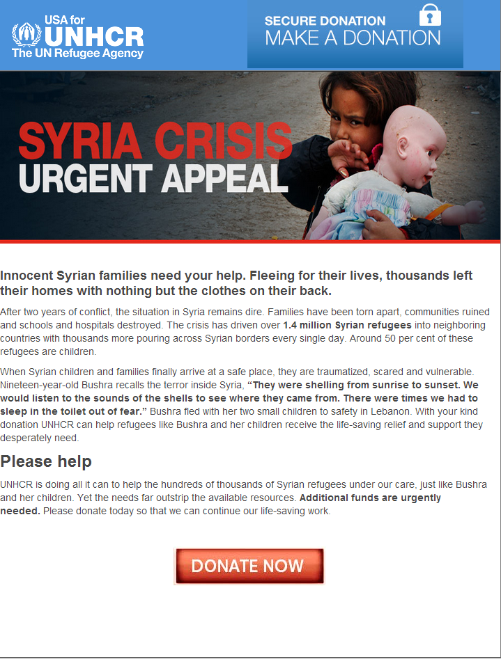 Syria_Fake_Bogus_Fraudulent_Donation_Site_Campaign_Agency_UNHCR_Scam_Fraud_Credit_Card_02